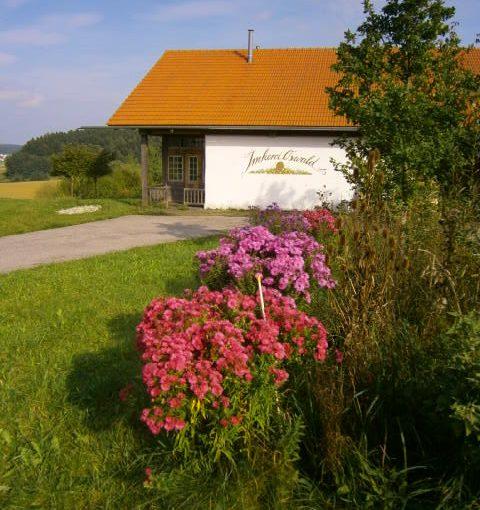 Honigladen und Imkereigebäude von Imkerei Oswald in der schönen Landschaft des Isar-Hügellandes. Am Horizont sieht man den Wald und im Vordergrund blühende Astern, darüber blauer Himmel. Im Shop Honig kaufen kann man ebenso wie im Honigladen, dessen Eingang links neben dem Wandgemälde mit dem Imkereischriftzug ist.