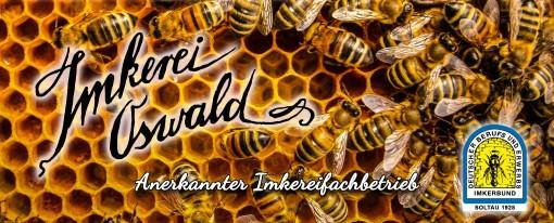 """Die Honigbienen (Apis mellifera hallertauensis) auf einer Wabe. Darüber der Schriftzug """"Imkerei Oswald"""" als Banner auf der Startseite des Onlineshops und Honigversand von Familie Oswald (bio-honig.com H.G.u.R.Oswald GbR)."""