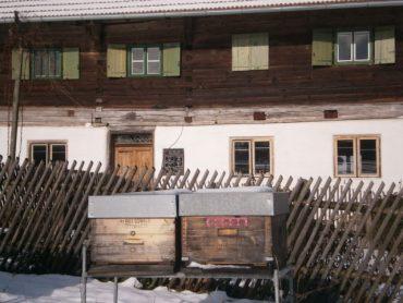 Bienenwachs online bestellen: Der Bienenhof und die Bienenhaltung im Winter.
