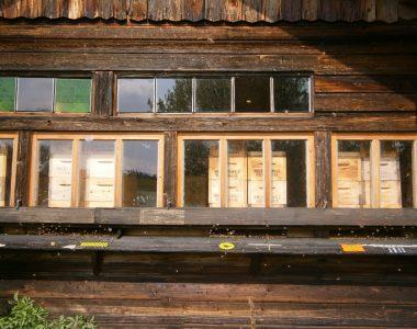 WO KANN ICH BIENENWACHS KAUFEN Die Vorderseite des Bienenhauses von Honig & Wachs Imkerei Familie Oswald in Oberlauterbach bei Pfeffenhausen.