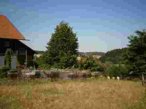 Die Imkerhofstelle mit Bauernhaus , Bauerngarten, Bienenvölkern und Schafen. Jetzt online Bienenwachs kaufen bio.