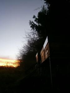 Waldbienenstand in der Abenddämmerung des 23.Dezember 2014