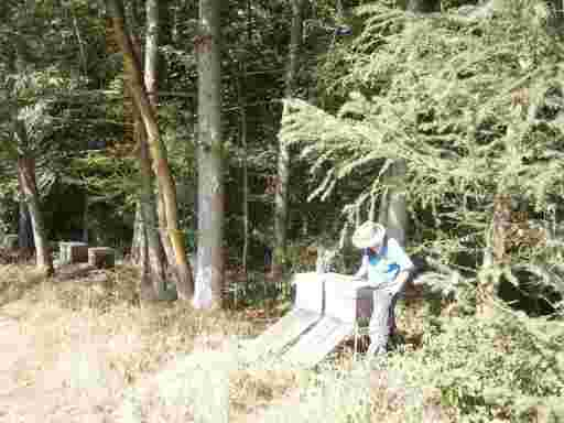 Biohonig Imker Oswald bei seinen Bienenvölkern in Süddeutschland. Er trägt Imkerarbeitskleidung, einen beigen Hut mit breiter Krempe, ein dicht gewebtes Hemd mit blauer Weste, und einen Bienenschleier.