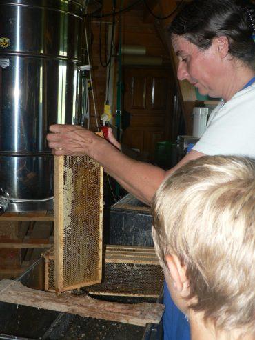 Ruth Oswald erklärt einem Jungen die Honigernte. Zu sehen ist ein Honigfass sowie eine Honigwabe.