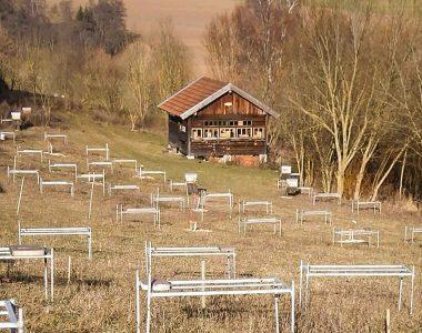 Es ist ein Bienengarten mit Bienenhaus und einem Wasserbiotop bzw. Weidenbiotop vom Bienenhof Oswald zu sehen.