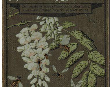 Vorderseite eines Imkerbuches, das eine farbige Illustration von Bienen zeigt, welche eine Robinienblüte befliegen, um aus dem Nektar Robinienhonig (Akazienhonig) zu bereiten. Der Buchdeckel ist im Jugenstil gestaltet.