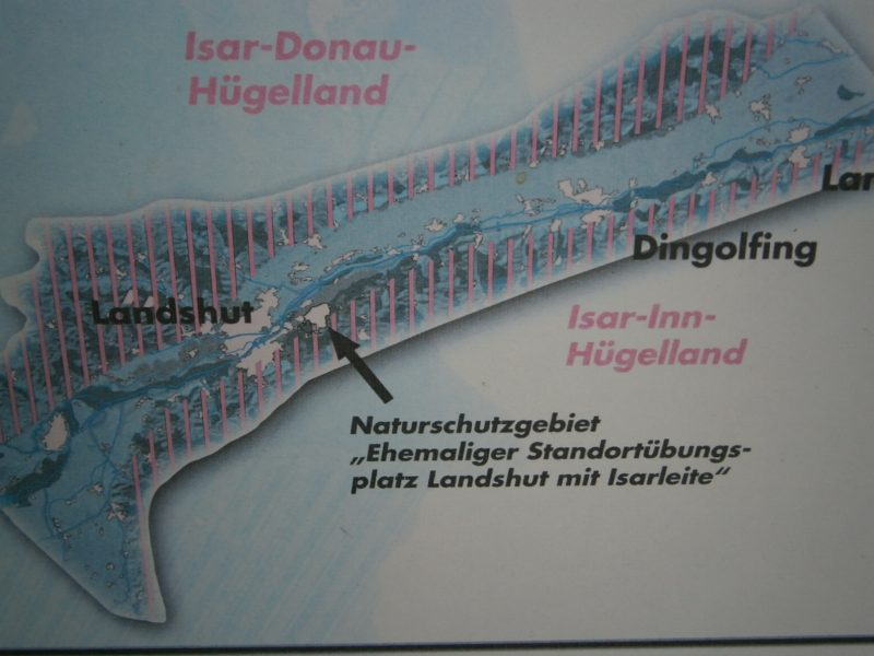 Orientierungstafel Naturschutzgebiet Ehemaliger Standortübungsplatz.