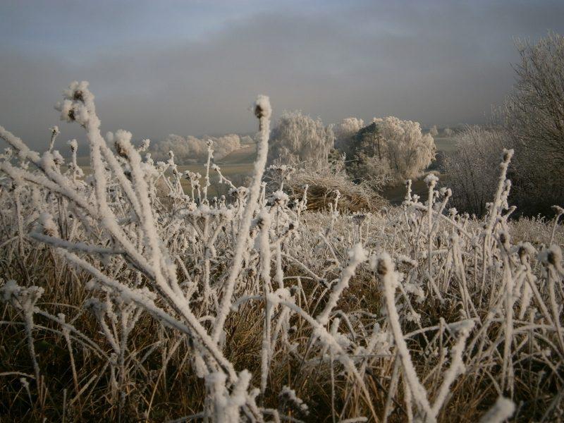 Väterchen Frost hat Einzug gehalten.