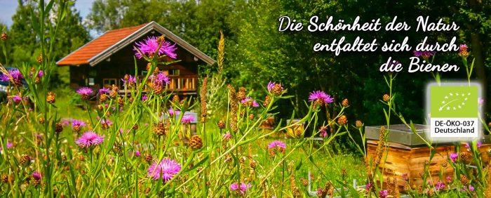 Frühlings gefühl im Bild weil es Lila Blüten gibt. Auch einen Bienenkorb ist im Foto gans rechts zu sehen.