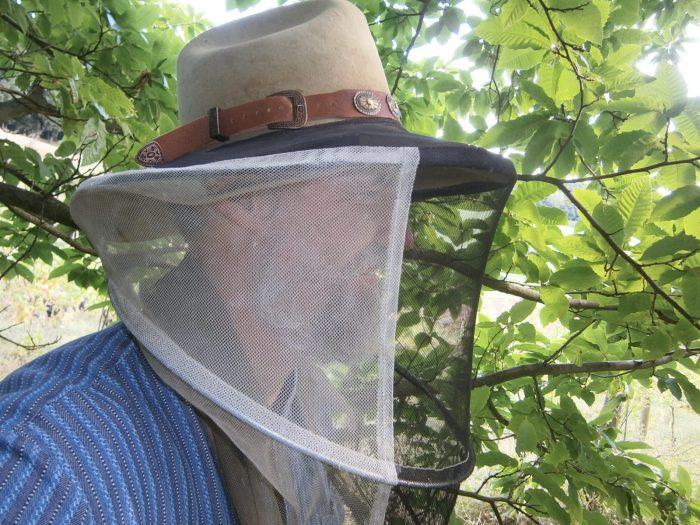 Imker Oswald mit Hut und Bienenschleier an seinem Bienenstand.