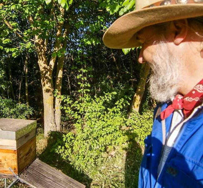 Imker Oswald besucht seine Bienenvölker.