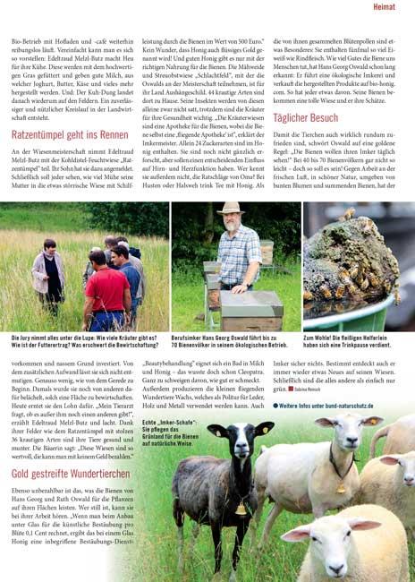 Artikel über den Hallertauer Bienenhof Familie Oswald mit Bildern von Schafen und Bienen.