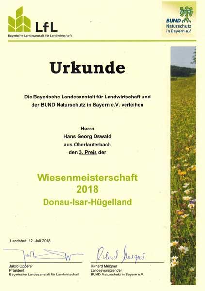 Die Original Urkunde von der Wiesenmeisterschaft.
