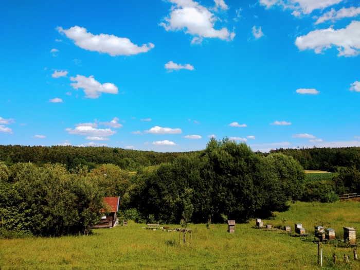 Wer guten Honig mag, ist hier richtig, beim historischen Bienenhof der Imkerei Oswald im Hopfenland Hallertau zwischen Isar und Donau.