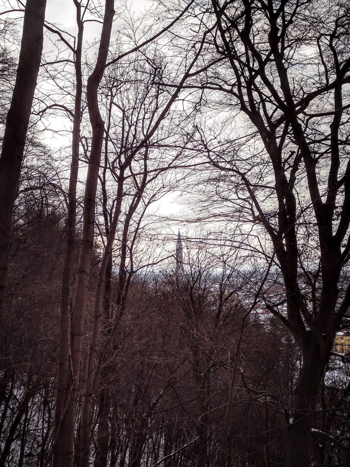 Hommage an Schuberts Winterreise.